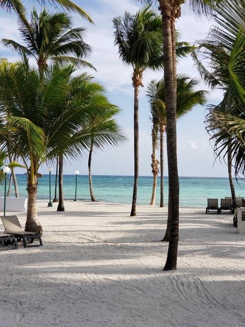 Paradise in Cancun