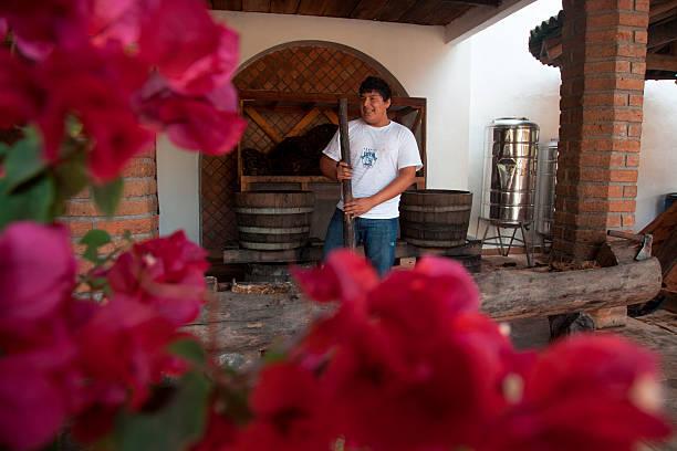 Tequila making demonstration at Leyva boutique tequila distillery, near Puerto Vallarta, Jalisco, Mexico